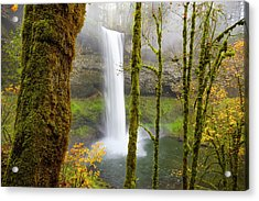 Autumn At Silver Falls State Park Acrylic Print