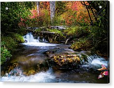 Acrylic Print featuring the photograph Autumn Cascades by TL Mair