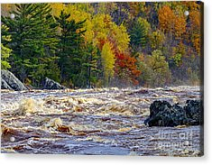 Autumn Colors And Rushing Rapids   Acrylic Print