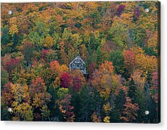 Autumn In Maine Acrylic Print