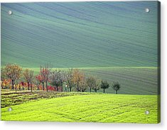 Autumn In South Moravia 18 Acrylic Print