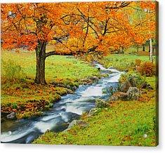Autumn In Vermont G Acrylic Print by Ron thomas