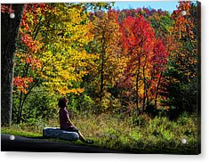 Autumn Leaves In The Catskill Mountains Acrylic Print