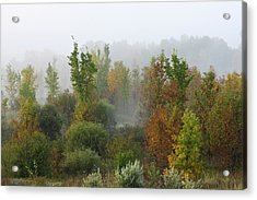Acrylic Print featuring the photograph Autumn Morning Fog by Tatiana Travelways