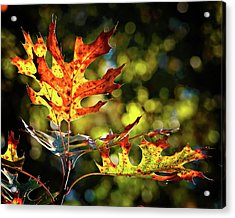 Autumn Mosaic Acrylic Print
