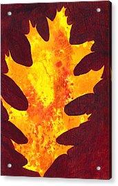 Autumn Oak 2 Acrylic Print