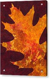 Autumn Oak 6 Acrylic Print