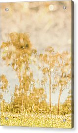 Autumn Puddles Acrylic Print