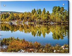 Acrylic Print featuring the photograph Autumn Reflections At Ivie Pond by TL Mair