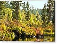 Autumn Scene, Deschutes River Acrylic Print by Michel Hersen