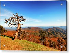 Autumn Scenic Drive Along The Blue Ridge Parkway In North Caroli Acrylic Print