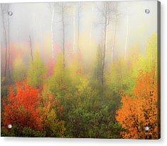 Autumn Stillness 2 Acrylic Print by Leland D Howard