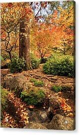 Autumn Stream In Lithia Park Acrylic Print