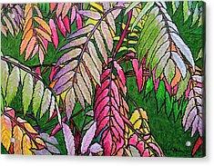 Autumn Sumac Acrylic Print