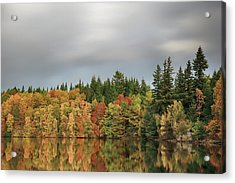 Acrylic Print featuring the photograph Autumn Tree Reflections by Grant Glendinning