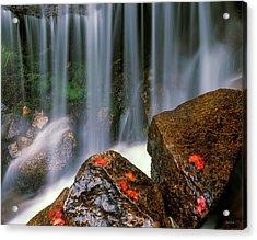 Autumn Waterfall Acrylic Print by Leland D Howard