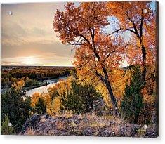 Autumns Best Acrylic Print by Leland D Howard