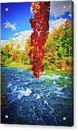 Acrylic Print featuring the photograph Autumn's Flame - Niagara Falls, New York by Lynn Bauer