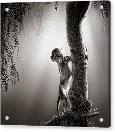 Baby Baboon Acrylic Print