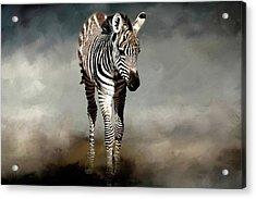 Baby Stripes Acrylic Print