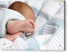Babys Feet And Toes Showing Heel Prick Acrylic Print by Tirc83