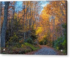 Back Road Beauty Acrylic Print