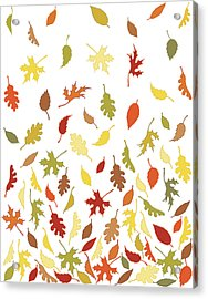 Background Pattern Of Falling Autumn Acrylic Print by Photos.com
