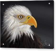 Acrylic Print featuring the pastel Bald Eagle by Fe Jones