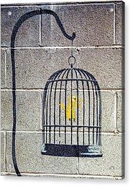 Acrylic Print featuring the photograph Banksy Bird Cage Detroit by Gigi Ebert