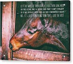 Barn Bay Quote Acrylic Print