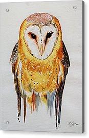 Barn Owl Drip Acrylic Print