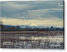 Acrylic Print featuring the photograph Baskett Slough National Wildlife Refuge by Craig Leaper