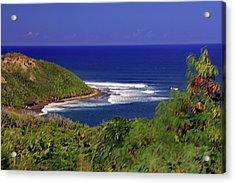 Acrylic Print featuring the photograph Bay In St Kitts by Tony Murtagh