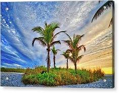 Acrylic Print featuring the photograph Beach Sunrise Over The Palms by Lynn Bauer