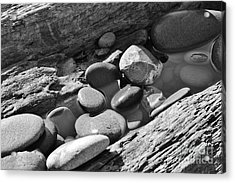 Acrylic Print featuring the photograph Beach Textures by Jeni Gray
