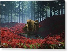 Bear With Cubs Acrylic Print