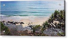 Beautiful Noosa Beach  Acrylic Print