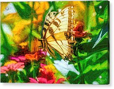 Beautiful Swallow Tail Butterfly Acrylic Print