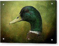 Beauty In Green Acrylic Print
