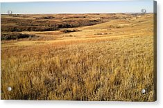 Beauty On The High Plains Acrylic Print