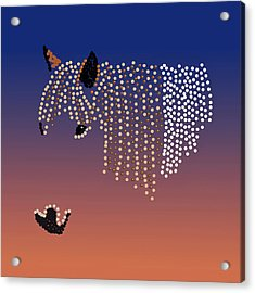 Bedazzled Horse's Mane Acrylic Print