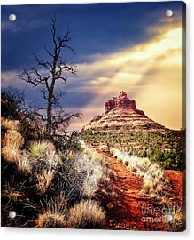 Bell Rock Acrylic Print by Scott Kemper