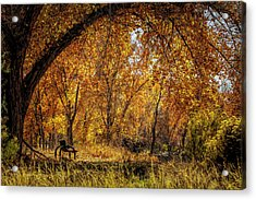 Bench With Autumn Leaves  Acrylic Print