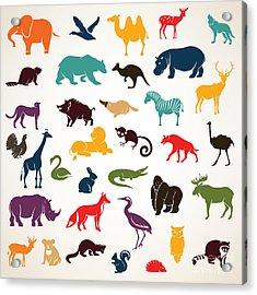 Big Set Of African And European Animals Acrylic Print