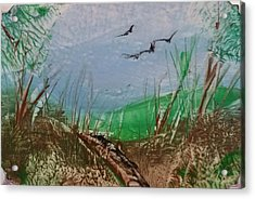 Birds Over Grassland Acrylic Print