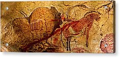 Bison Horse And Other Animals Closer - Narrow Version Acrylic Print