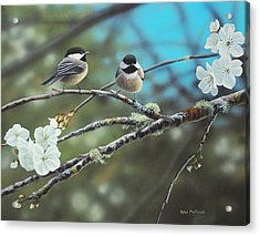 Acrylic Print featuring the photograph Black Capped Chickadees by Peter Mathios