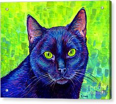 Black Cat With Chartreuse Eyes Acrylic Print