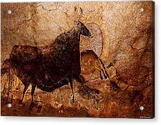 Black Cow And Horses Acrylic Print