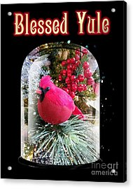 Acrylic Print featuring the photograph Blessed Yule by Rachel Hannah
